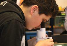 Felix kids club mikroskop forschen felix kids club